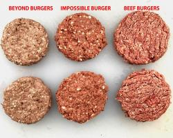 burger test patties